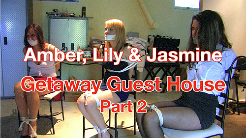Amber, Lily & Jasmine: Getaway Guest House: Part 2