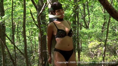Jasmine St James: Means Of Inducement (MP4)